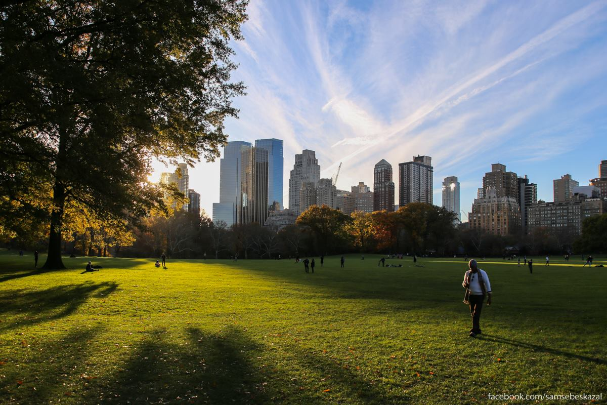 Картинка парк в америке