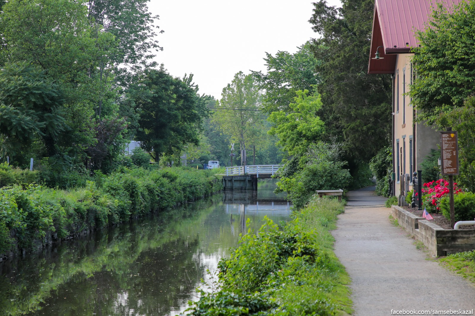 Ruslo kanala zarossee kustarnikom.
