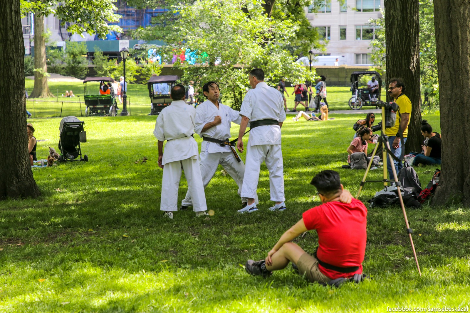 Zanatia po karate v Centralʹnom parke. Manhetten.