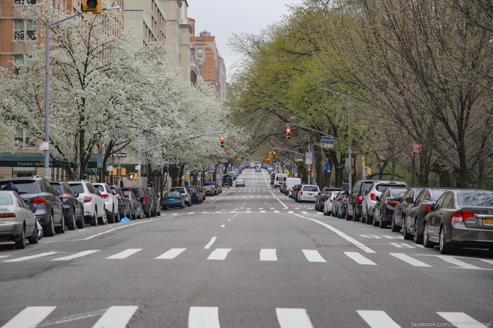 Нью-Йорк/Нью-Джерси, 30 марта Pustaa Pataa v rajone...