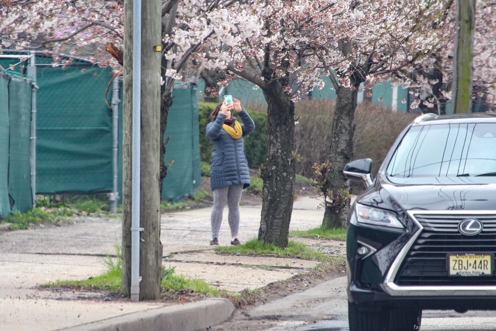 Нью-Йорк/Нью-Джерси, 30 марта Pervyj vstrecennyj mnoj...