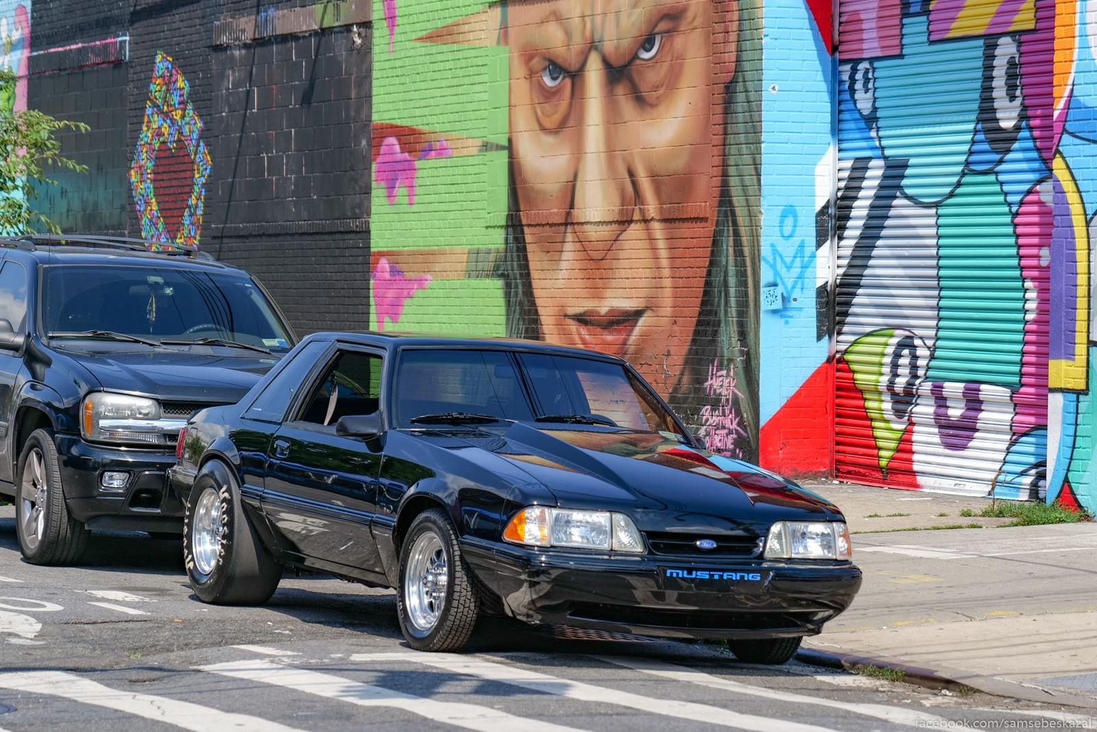 Surovyj Mustang iz Busvika.