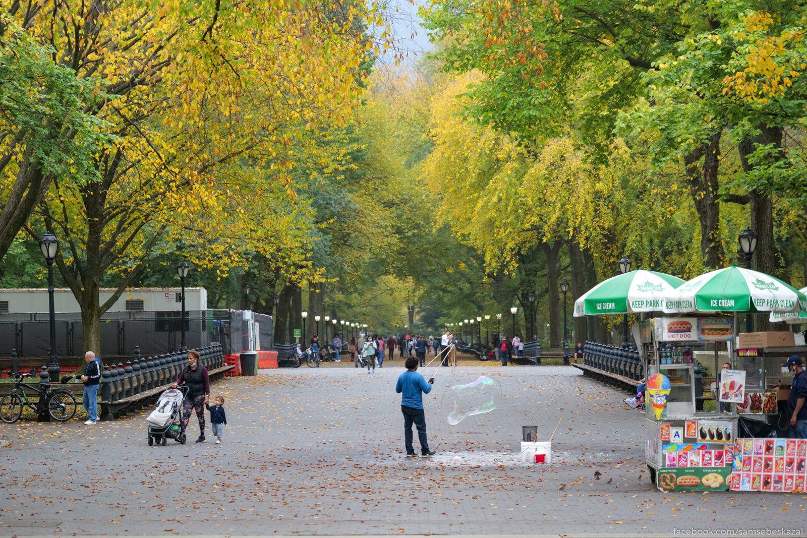 Нью-Йорк, 22 октября 2020 года Glavnaa allea parka.